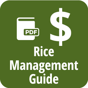 Rice Management Guide